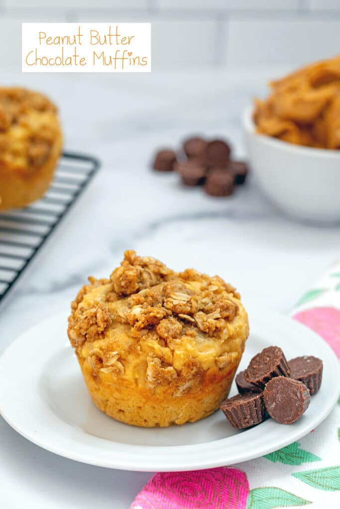 Head-on view of peanut butter chocolate muffin on a small white plate with mini peanut butter cups around and more muffins and bowl of peanut butter in background with recipe title at top