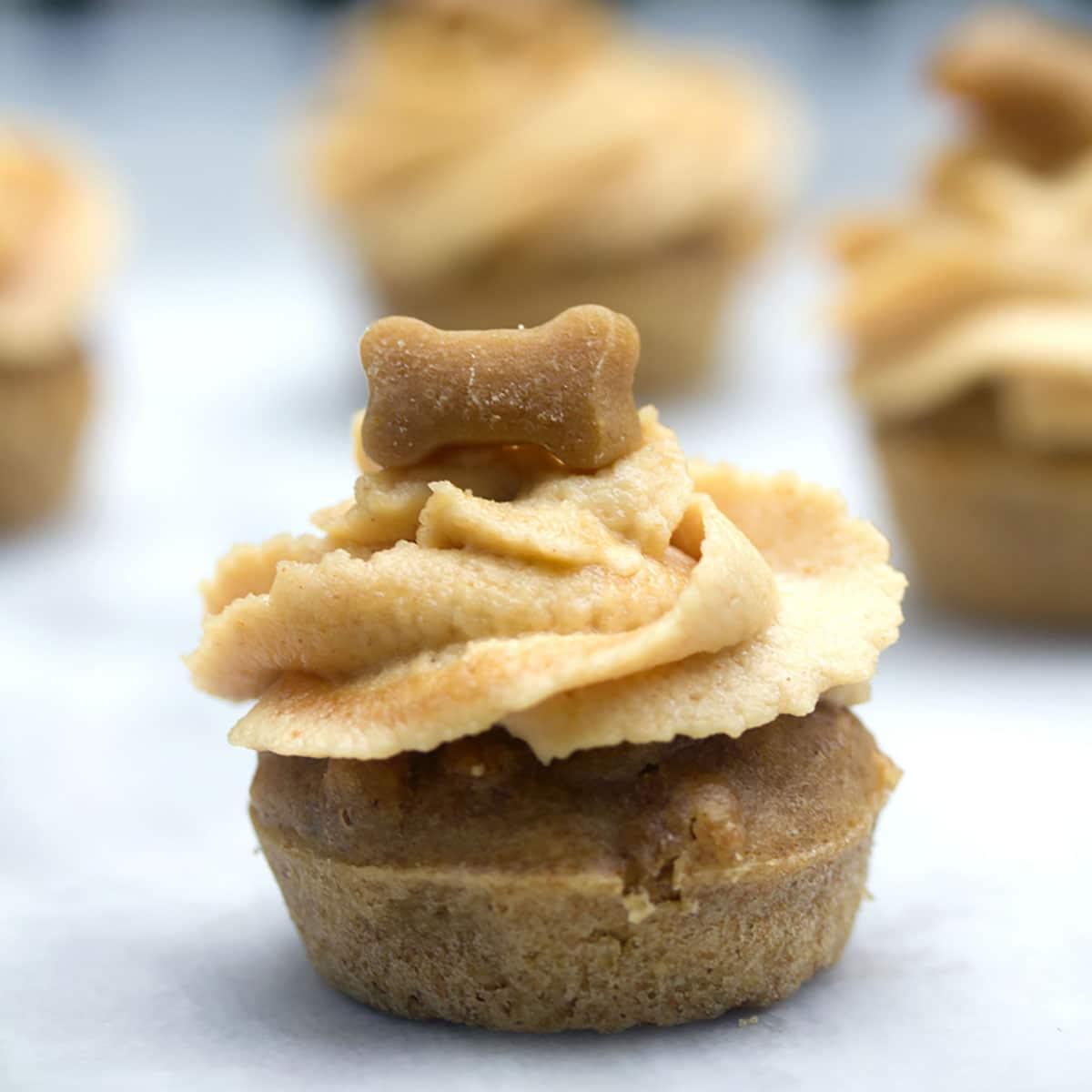 Pup Cakes Peanut butter /& Honey