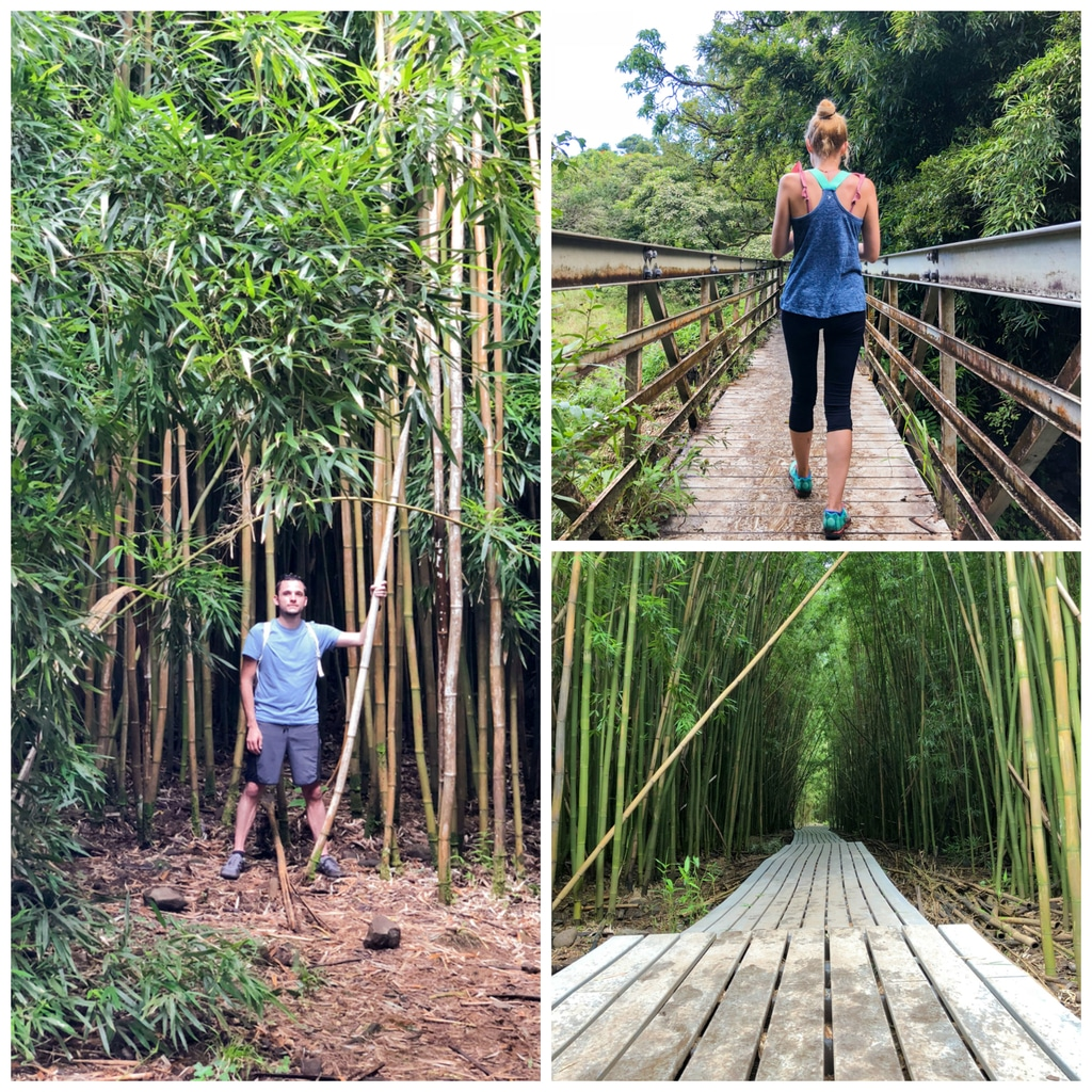 A collage featuring Chris and Sues walking through bamboo forest on Pipiwai Trail