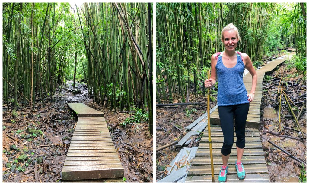 Trails in bamboo forest on Pipiwai Trail