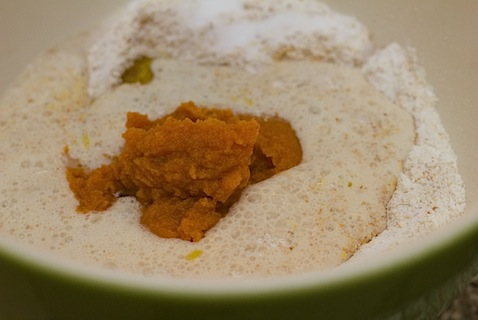 Pumpkin Crust Flour Pumpkin Puree.jpg