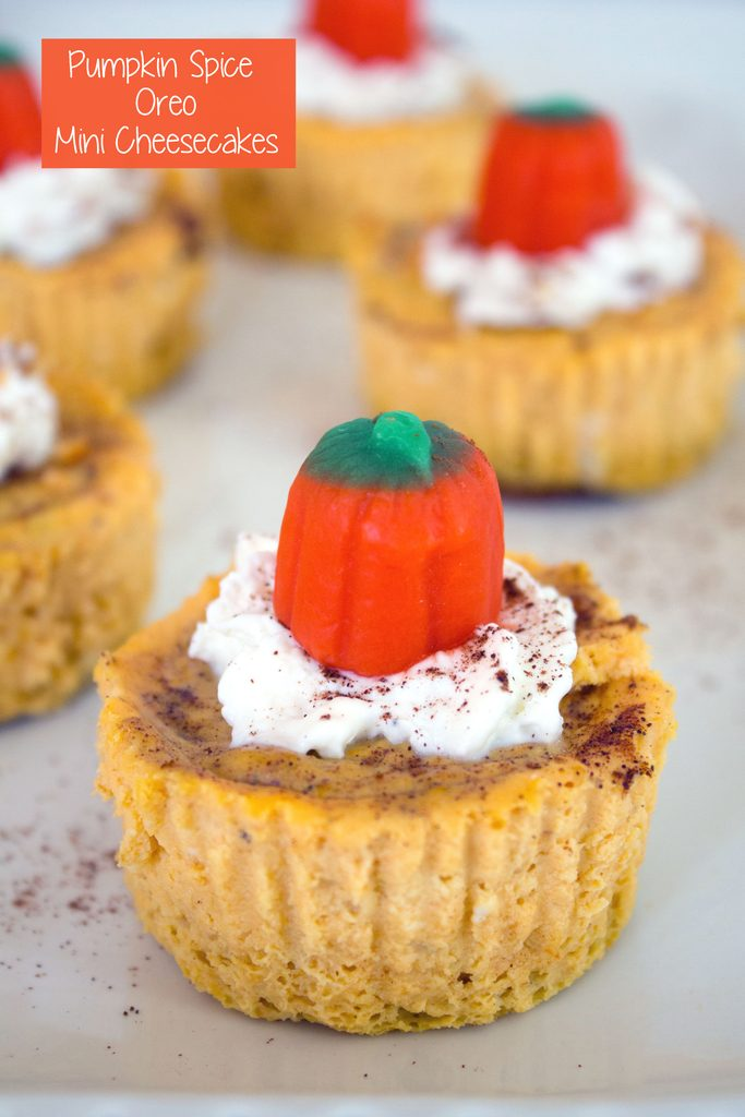 Head-on view of a pumpkin spice Oreo mini cheesecake with whipped cream and pumpkin candy topper with more mini cheesecakes in the background and recipe title at top