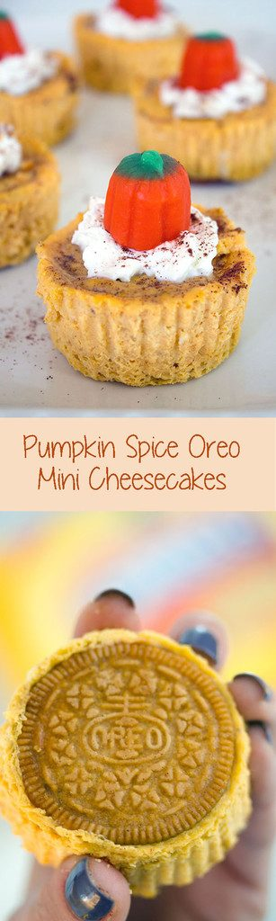 Pumpkin Spice Oreo Mini Cheesecakes -- These personal-sized pumpkin spice cheesecakes are the perfect fall dessert | wearenotmartha