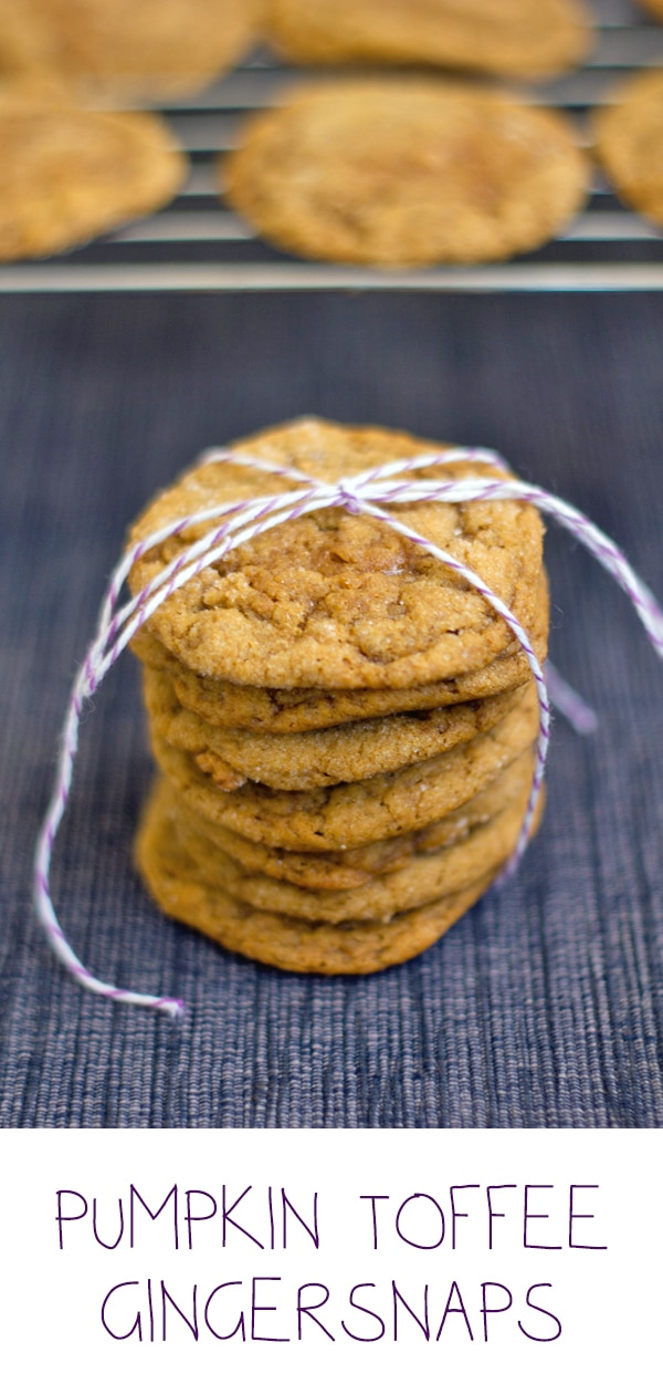 Pumpkin Toffee Gingersnaps