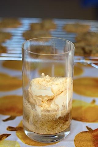 Tipsy Gingersnap Float Ice Cream.jpg