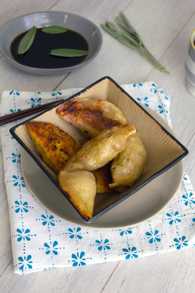 Turkey Cranberry Chinese Dumplings -- A fall twist on the traditional dumpling recipe! | wearenotmartha.com