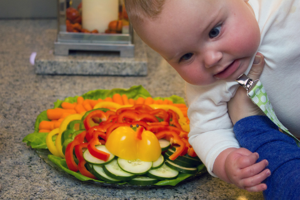 Turkey_Vegetable_Plate_Baby_Bombed