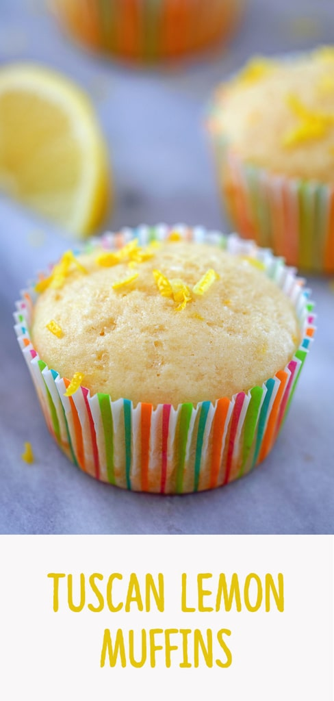 Tuscan Lemon Muffins -- These Tuscan Lemon Muffins take the typical lemon muffin to a whole new level! With the addition of ricotta cheese and olive oil, these will be the moistest muffins you've ever had | wearenotmartha.com #lemon #muffins #ricotta