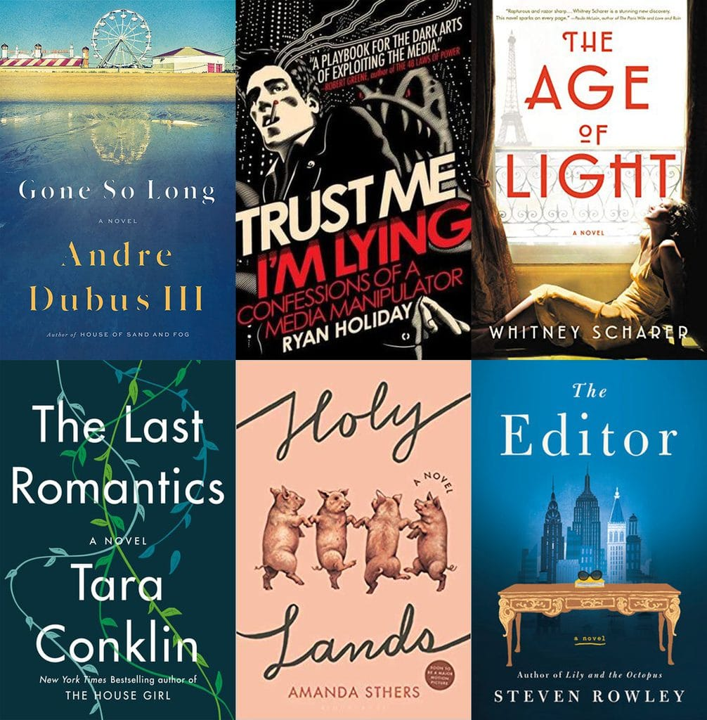Collage showing the six books I read in December, 2018, including Gone So Long, Trust Me I'm Lying, The Age of Light, The Last Romantics, Holy Lands, and The Editor