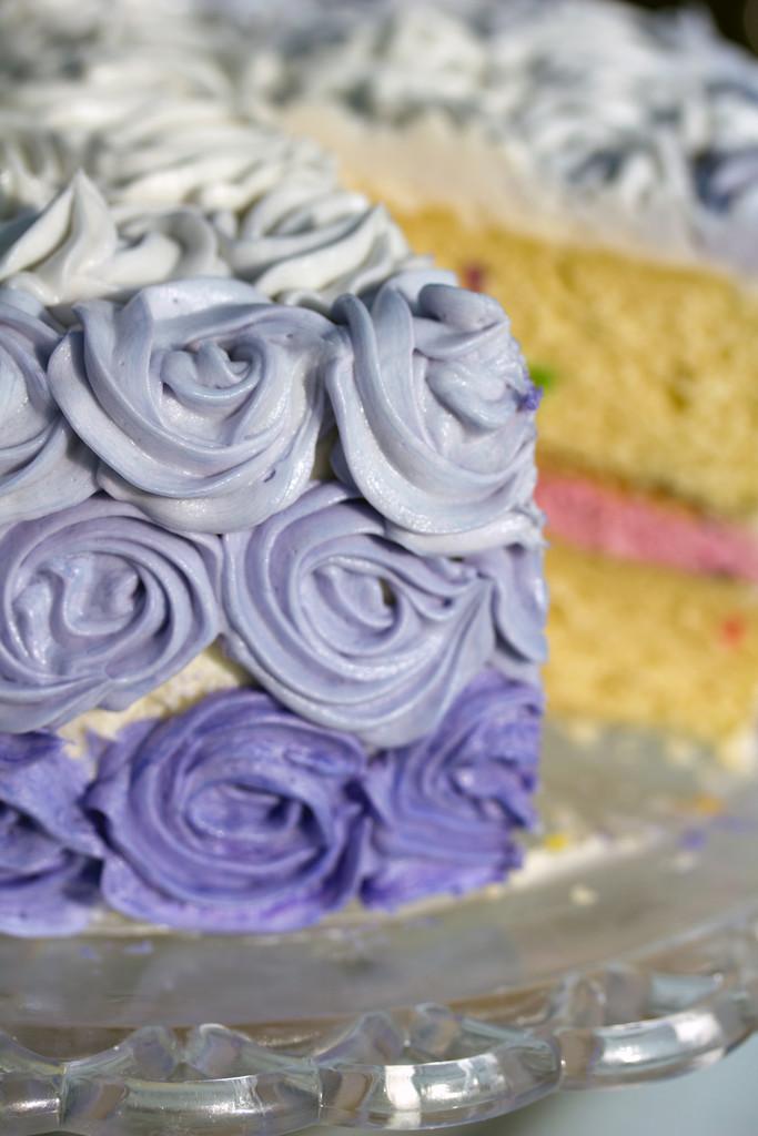 Wilton Rosette Ombre Cake 3