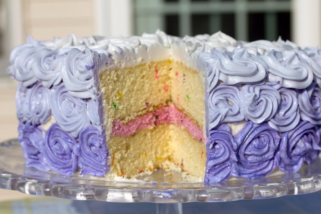 Wilton Rosette Ombre Cake 4