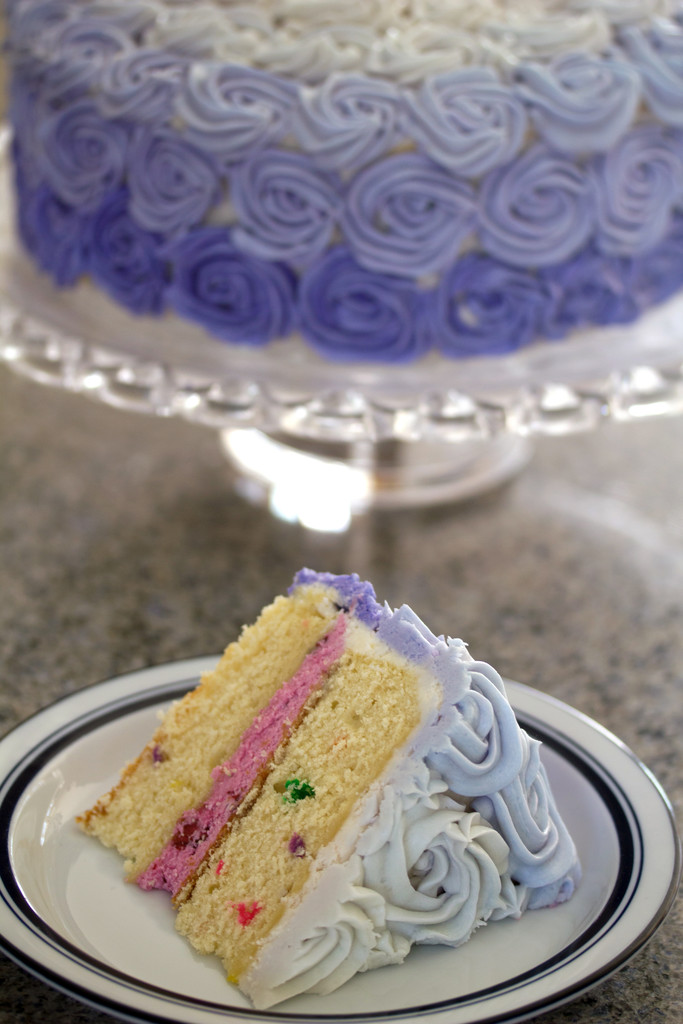 Wilton Rosette Ombre Cake 7