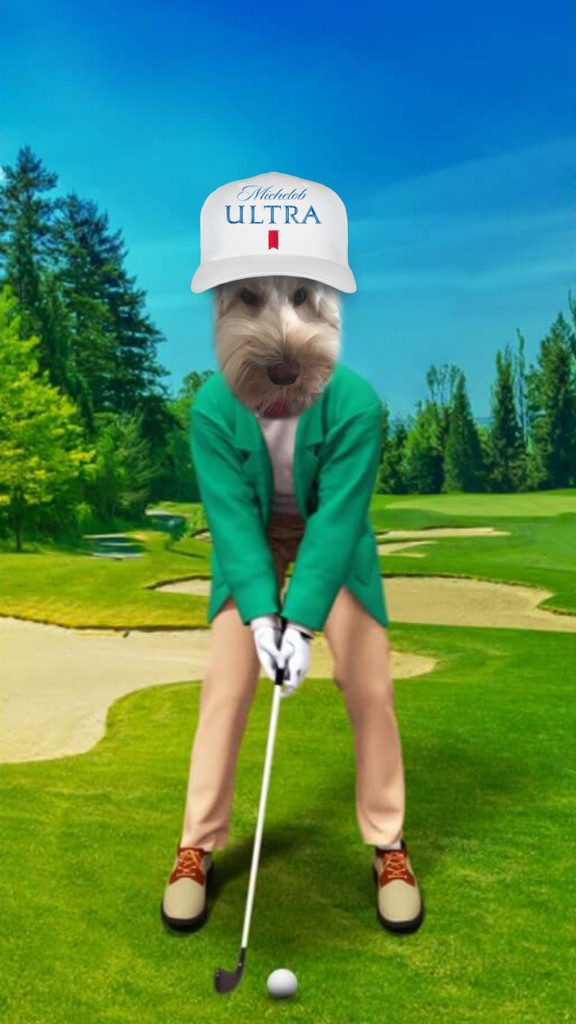 Winnie the Labradoodle Playing Golf | wearenotmartha.com
