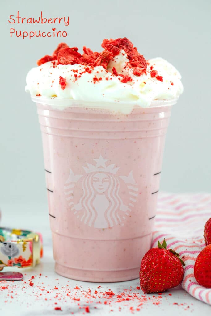 Head-on view of a homemade Starbucks' Strawberry Puppuccino topped with whipped cream and crushed freeze-dried strawberries with strawberries all around and recipe title at top